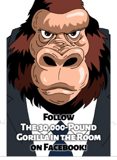 Follow the Gorilla on Facebook